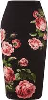Oasis Royal Worcester Pencil Skirt