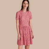Burberry Fit-and-flare Dropped-waist Lace Dress