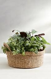 The White Company Small Round Seagrass Planter