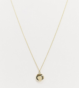 Shashi baby locket necklace in gold plate