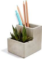 Kikkerland Planter & Pencil Holder