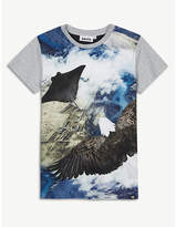 Molo Flying eagle print cotton T-shirt 4-14 years