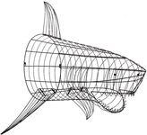 Shark Wall Decor , Wire Framed Version
