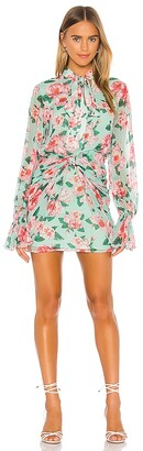 Lovers + Friends Amy Mini Dress