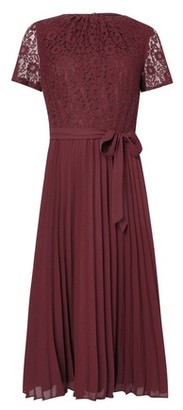 Dorothy Perkins Womens Berry Lace Pleat Midi Dress