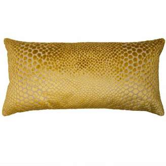 "Square Feathers Highland Exotic Pillow Size: 12"" x 24"""