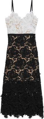 Catherine Deane Frida Floral-appliqued Guipure Lace Midi Dress