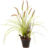 Asstd National Brand Nearly Natural Swampy Cattail Garden with Planter