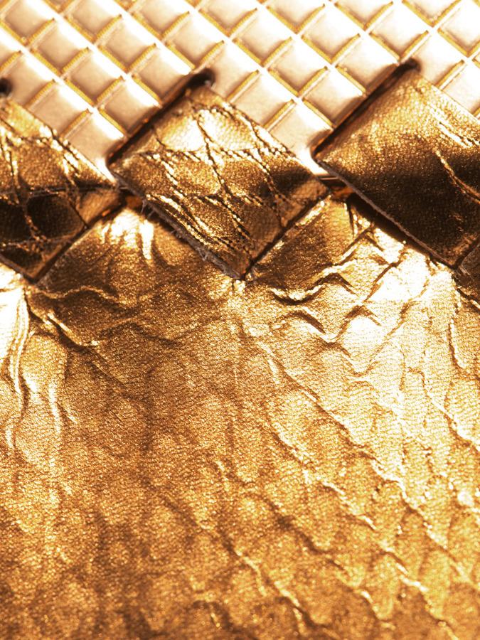 Bottega Veneta Metallic ayers clutch