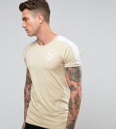 Puma Muscle Fit T-Shirt In Beige Exclusive To ASOS