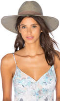 Janessa Leone Angelica Wide Brimmed Panama Hat in Sage. - size L (also in M,S)