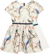 No Added Sugar Birds Printed Dress W/ Lurex