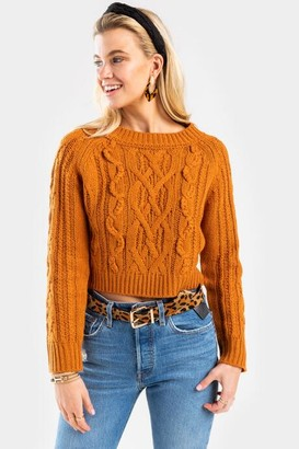 Harper Rose Ally Braid Knit Sweater - Tortoise