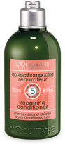 L'Occitane Repairing Conditioner for dry & damaged hair 250ml
