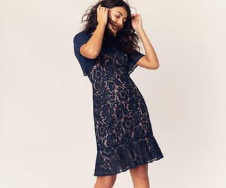Oasis Lace Skater Dress