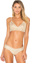 Hanky Panky Golden Leopard Triangle Bralette in Beige