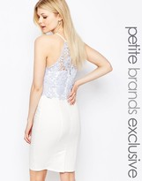 Paper Dolls Petite Lace Bodice Halter Pencil Dress