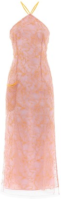 Jacquemus Embroidered Tulle Dress
