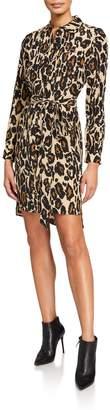 Diane von Furstenberg Prita Leopard Long-Sleeve Wrap Dress