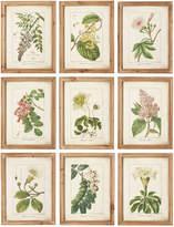 OKA Summer Garden Framed Prints, Set of 9