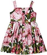 Dolce & Gabbana Rose-Print Cotton Poplin Dress