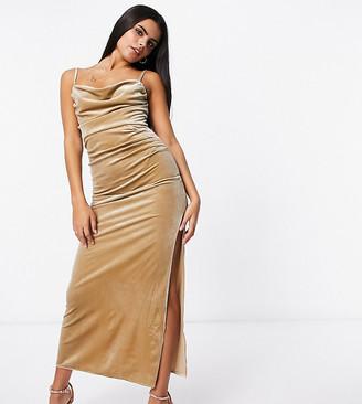Jaded Rose Petite exclusive velvet cami maxi dress in champagne