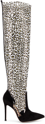 Gianvito Rossi Camoscio & Plexi Knee High Boots in Black & Leopard | FWRD