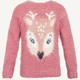 Fat Face Deer Crew Neck Jumper