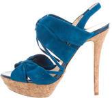 Alexandre Birman Suede Platform Sandals