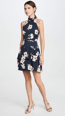 BB Dakota Gardenia Party Dress