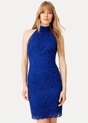 Phase Eight Edolie Lace Dress