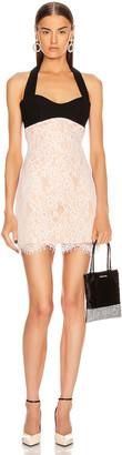 Rasario Lace Mini Dress in White & Black | FWRD
