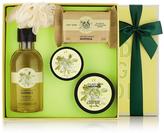 Moringa Classic Picks Gift Set