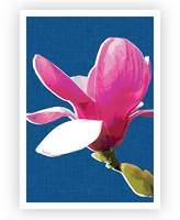 Design Mondo Magnolia Art Print, Indigo, A3