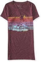 Aeropostale Womens Montana Scene Graphic T Shirt