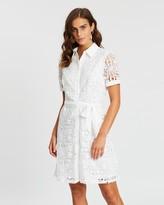 Dorothy Perkins Collared Lace Shirt Dress