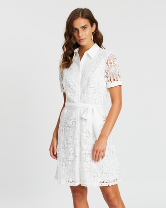 Dorothy Perkins Collared Lace Shirt Dress