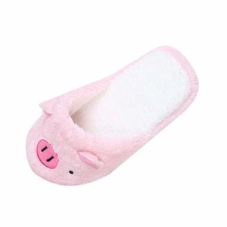 TEELONG Ladies Lovely Pig Cartoon Slippers