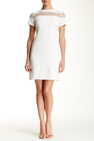 Julia Jordan Mesh Combo Shift Dress