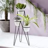 west elm Iris Planter + Chevron Stand - Triple