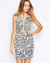 Finders Keepers Finder Keepers The Creator Dress in Leopard Print