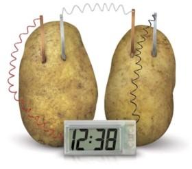Redbox 4M Green Science Potato Clock Kit