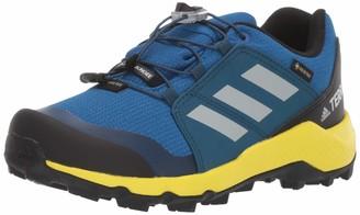 adidas outdoor Kids' Terrex GTX Hiking Shoe Boot