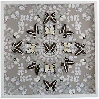 Dawn Wolfe Design Dawn Wolfe - Butterfly Construction: Putty Gray