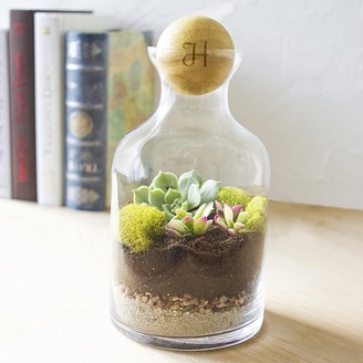 Cathy's Concepts Personalized 56-ounce Clear Glass Terrarium with Wood Ball