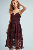 Donna Morgan Renata Lace Dress