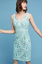 Maeve Gardenia Lace Column Dress