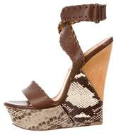 Lanvin Leather Python-Trimmed Wedges