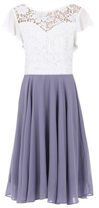 Dorothy Perkins Womens Jolie Moi Purple Contrast Lace Skater Dress, Purple