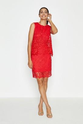 Coast Lace Overlay Dress